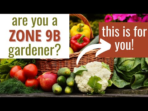 3 Must Have Tips for Zone 9b Gardeners