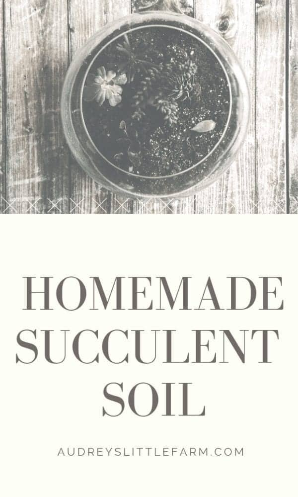 Homemade Succulent Soil