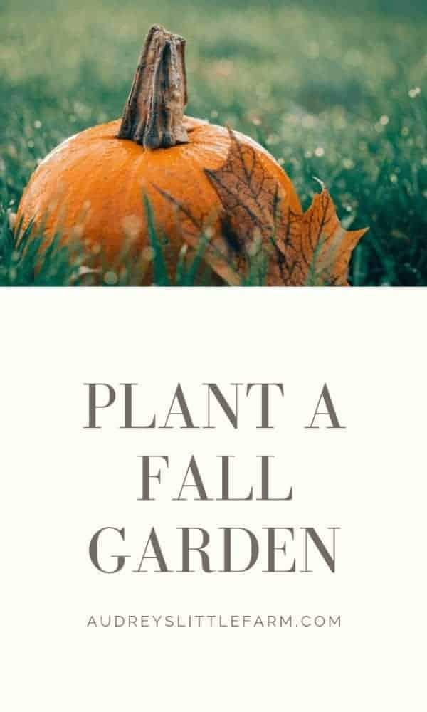 Plant a Fall Garden