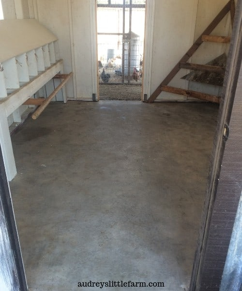 Clean Chicken Coop Floor
