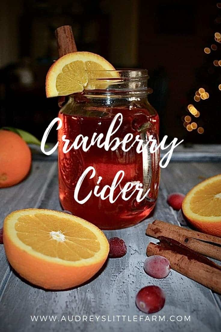 Cranberry Cider in a Mug Next to Fresh Oranges, Cranberries, and Cinnamon Sticks