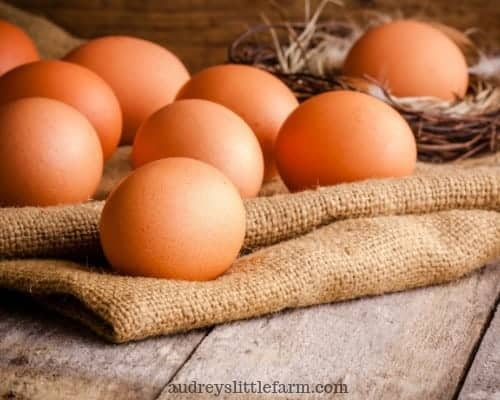 Chicken Eggs That Were Laid Because There Was Supplemental Lighting in the Chicken Coop