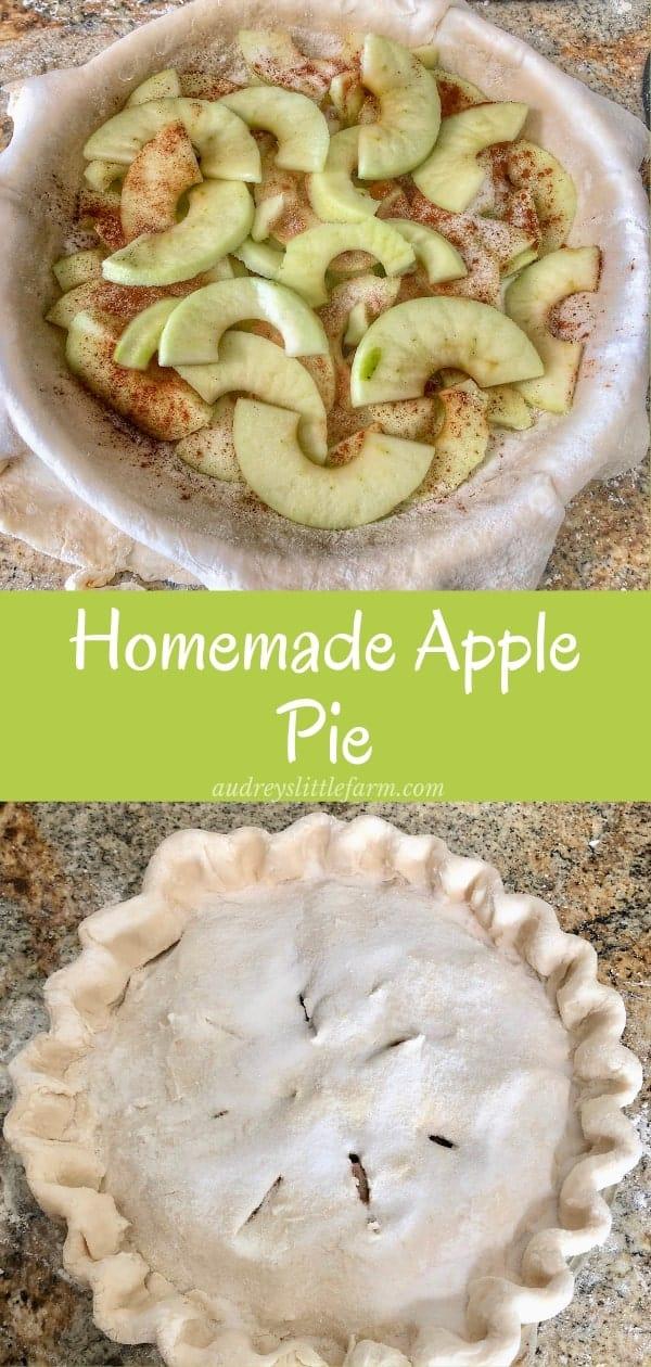 A Homemade Apple Pie