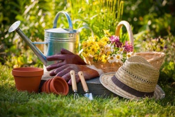 Best Gift Ideas for Gardeners