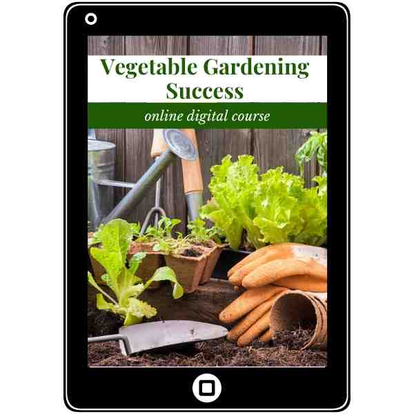 Cover Image for Online Digital Course - Vegetable Gardening Success