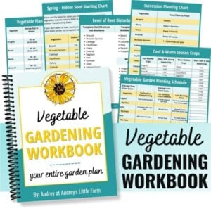 Cover Image of a Vegetable Gardening Workbook