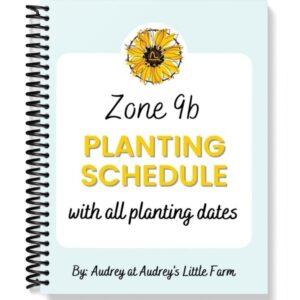 Zone 9b Vegetable Garden Planting Schedule