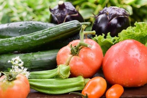 The Best Heat Tolerant Vegetables to Grow