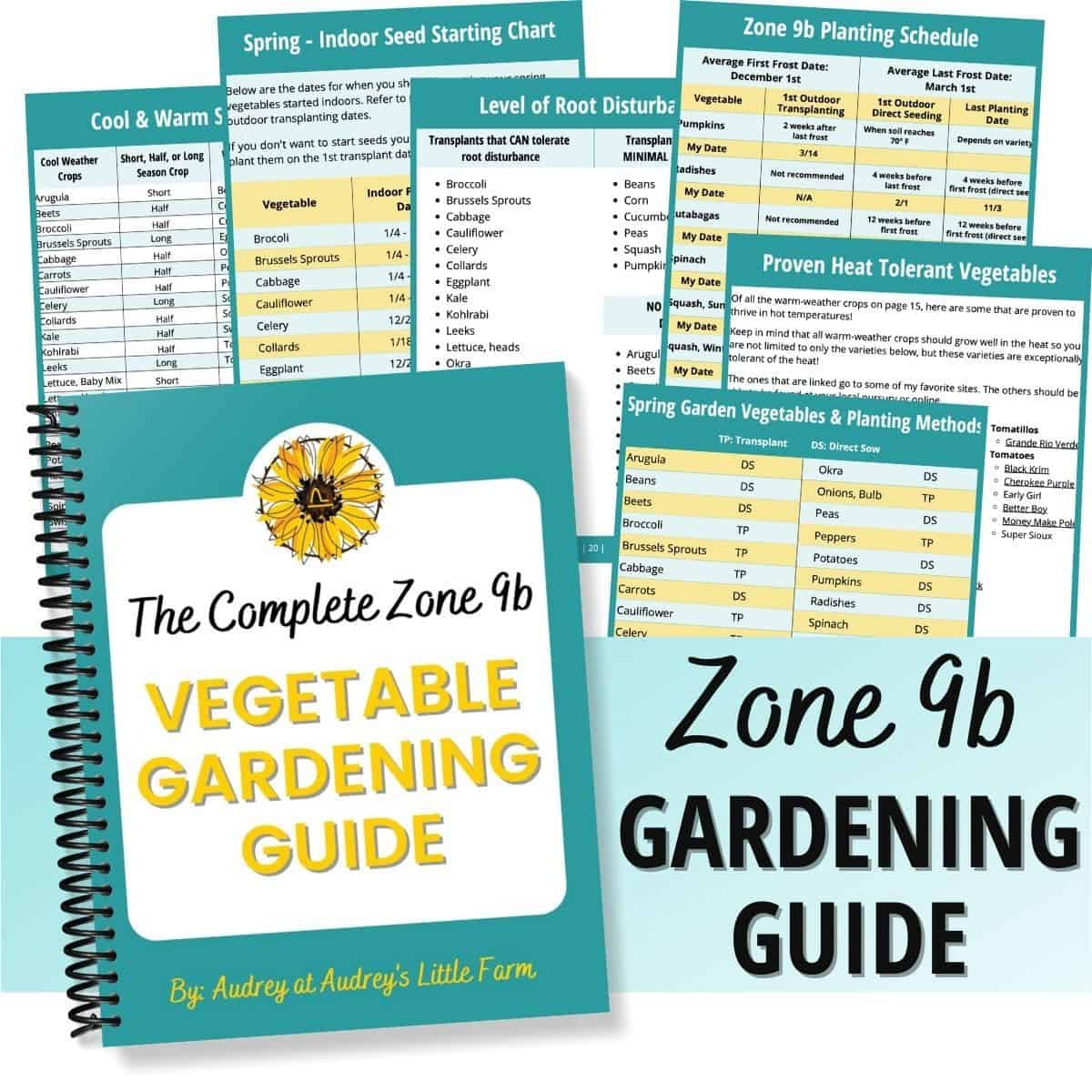 A Product Display of My Zone 9b Vegetable Gardening Guide